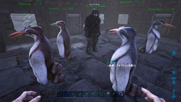 ペンギン ark テイム